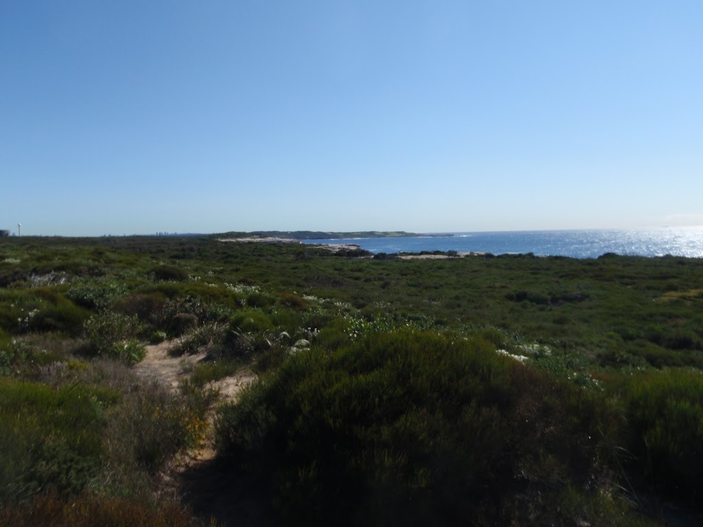 View from Cape Bailey Track (75570)