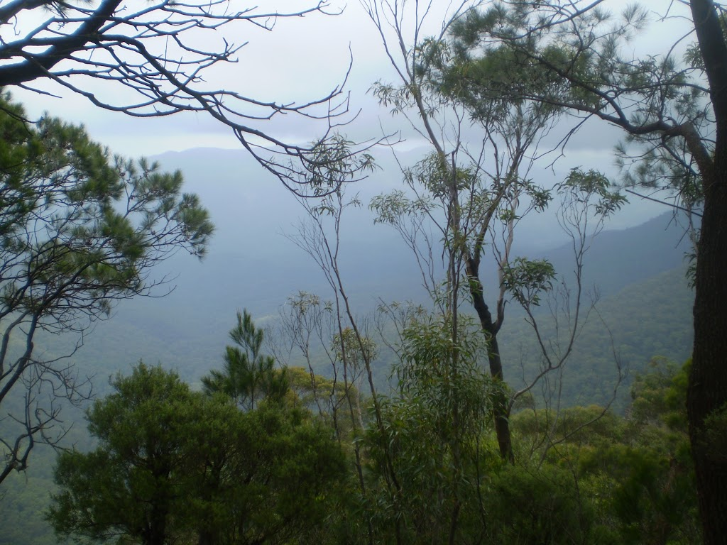 The Jamison Valley just before going down to Denfenella Crk