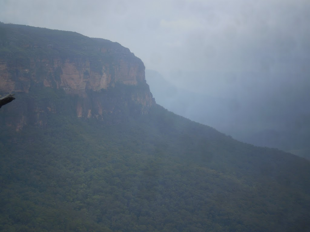 The Jamison Valley covered in fog (7649)