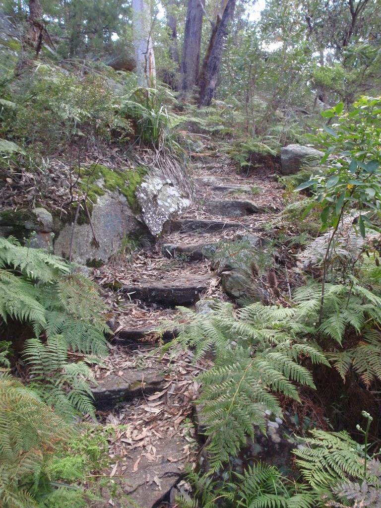 rock steps (76657)