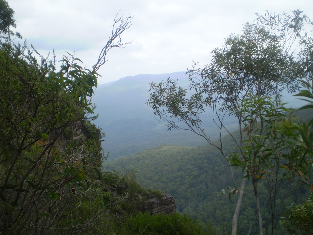 Looking out over the Jamison Valley from the National Pass