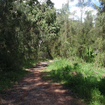following the georges river service trail (77086)