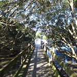 Salt Pan Creek boardwalk (77296)