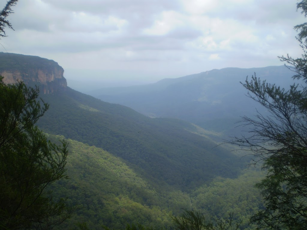 The Jamison Valley (7742)