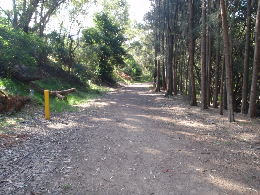 The concrete service trail becomes a hardened path