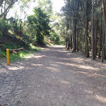 The concrete service trail becomes a hardened path (77422)