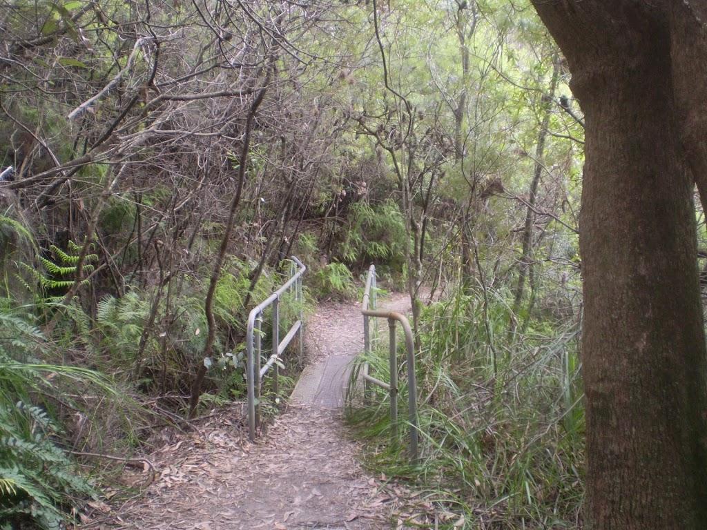 Overcliff Walk