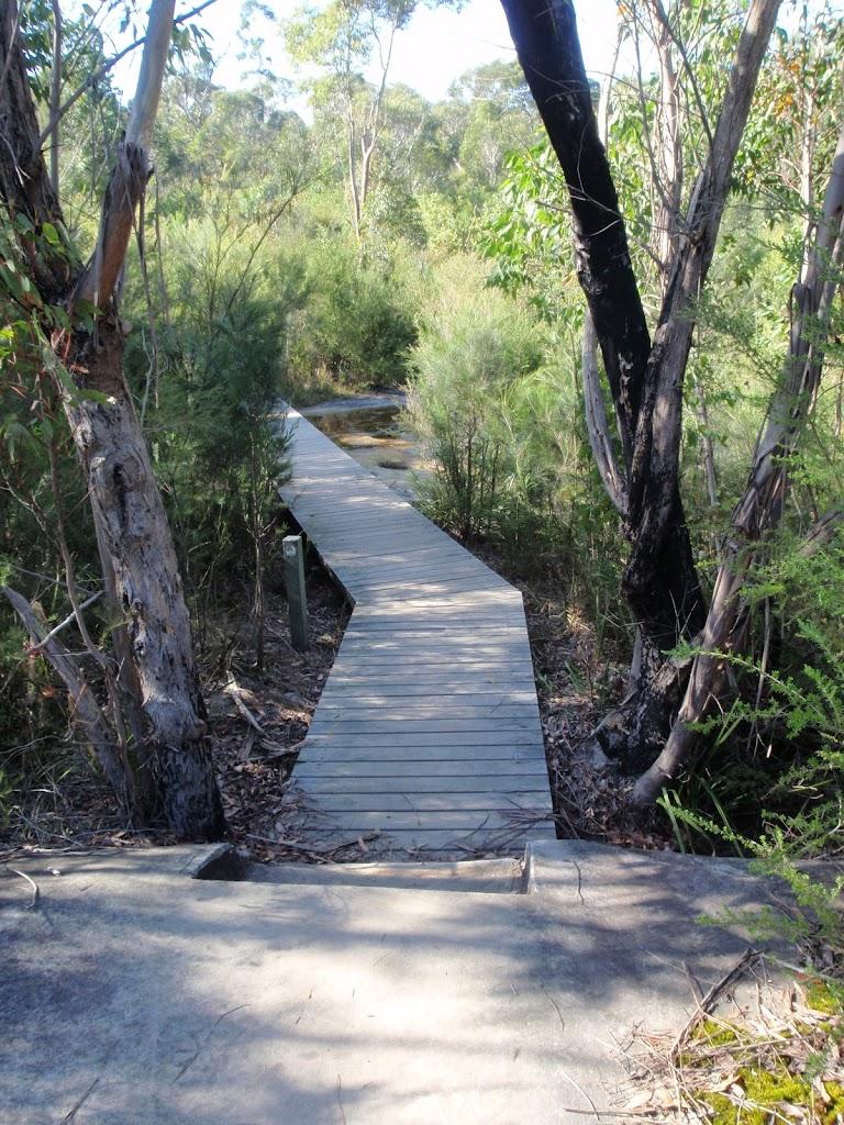 following a boardwalk