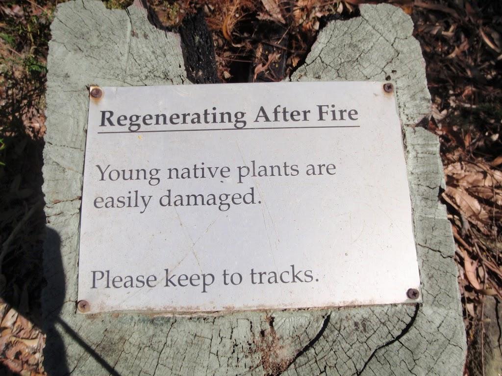 bushfire regeneration plaque (77704)