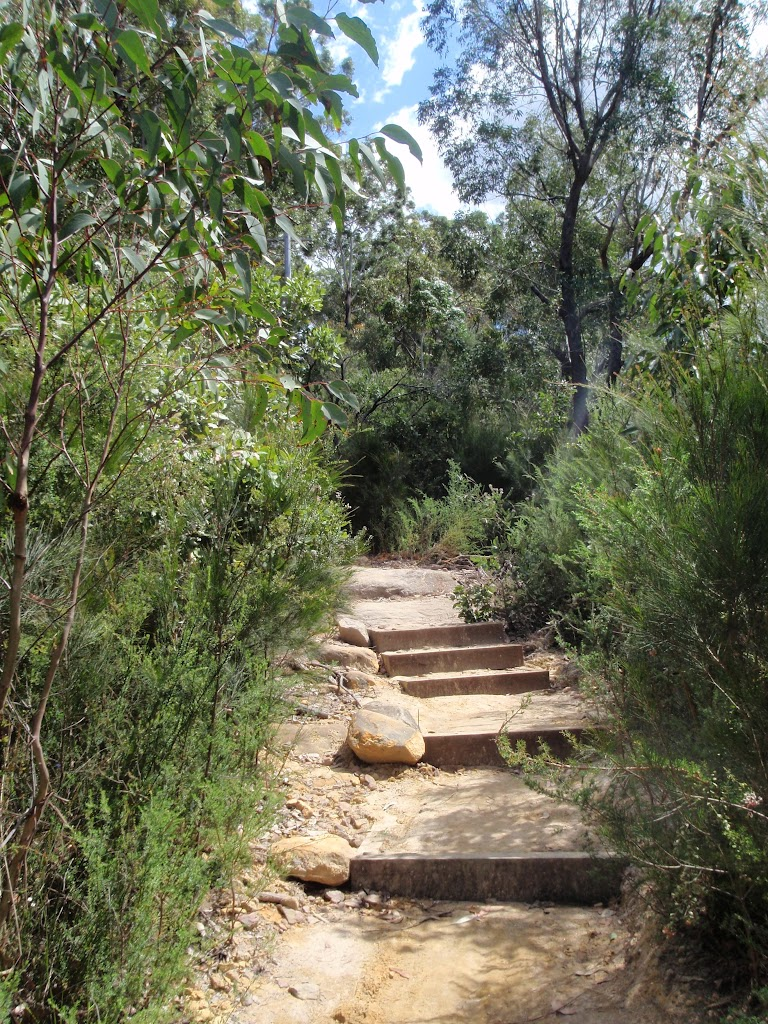 Steps up to Pennant Hills