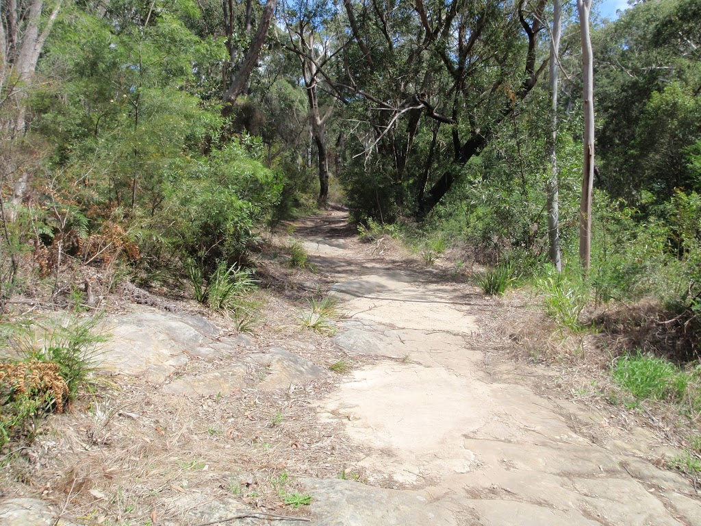 Service trail to Belinda Cres