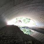 Tunnel under motorway