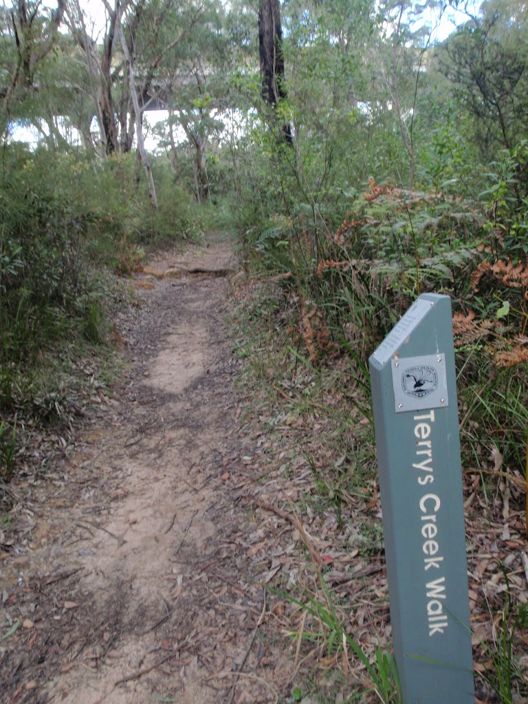 Signposted Terry's Creek Walk (78268)