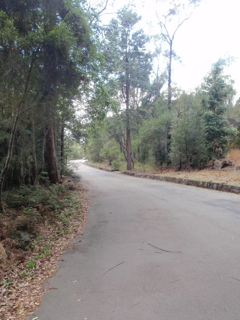 The Sphinx Memorial driveway