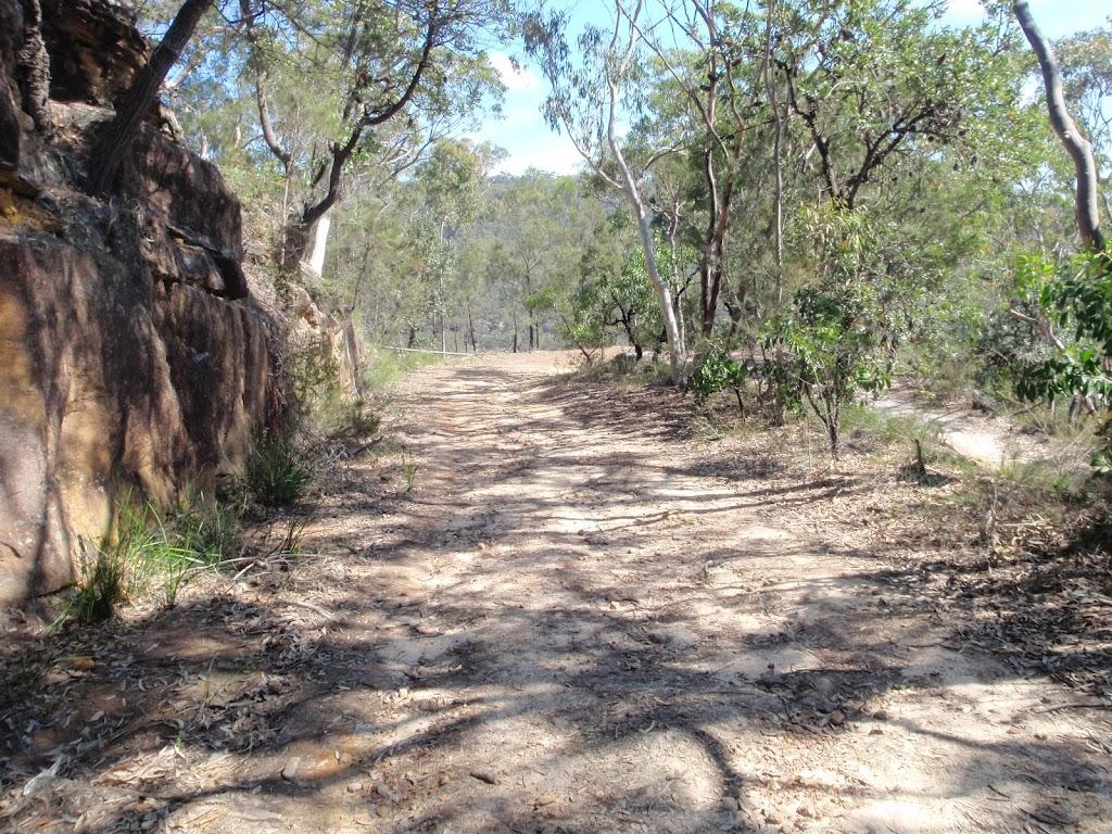 Bobbin Head track (78511)