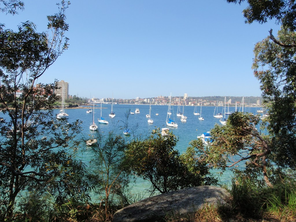 View from Manly Scenic Walk