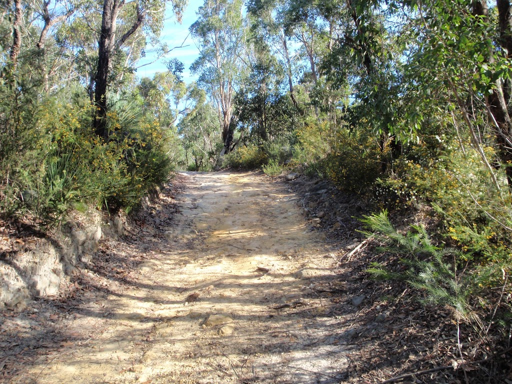 Track below Canoon Rd tennis courts (79222)