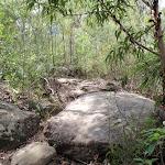 Track over rocks