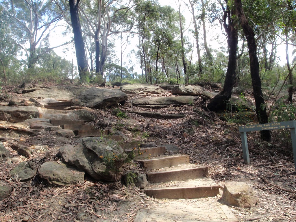 Track to Pennant Hills Park