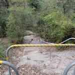Railed steps (79579)