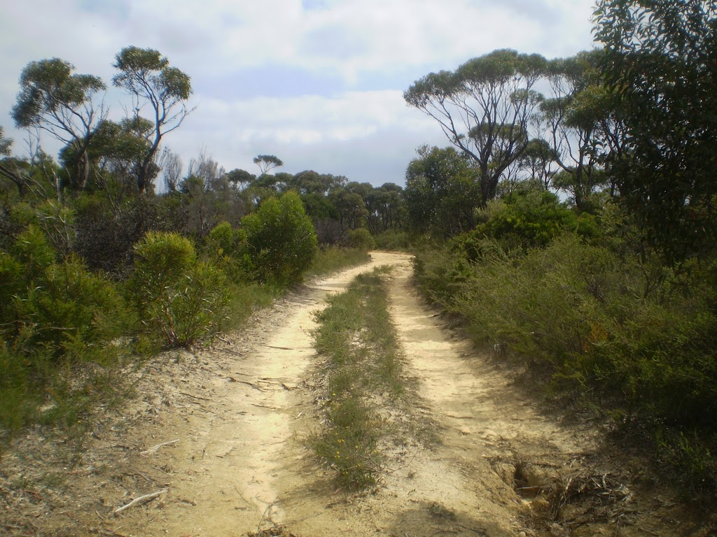 The King's Tableland Servicetrail