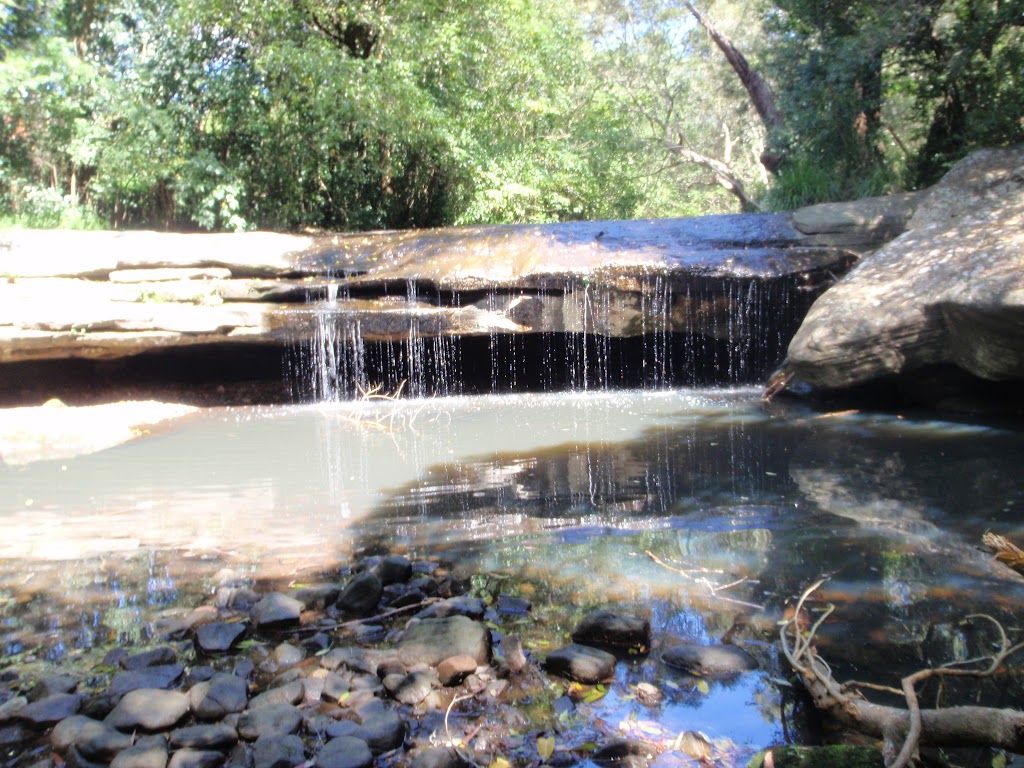 Terry's Creek Waterfall (80386)