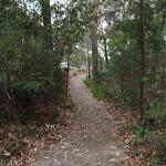 Mambara Track (82825)