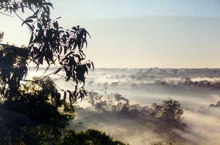 Morning fog over Bents Basin