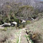Looking down steps to the eastern bridge (83581)
