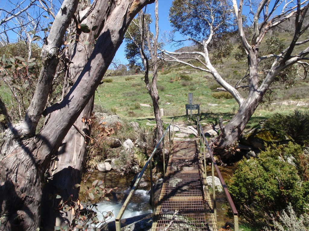 Bridge across Bogong Creek (83722)