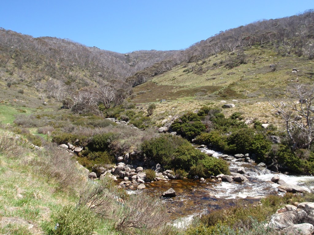 winding along the thredbo river