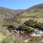 winding along the thredbo river (83749)
