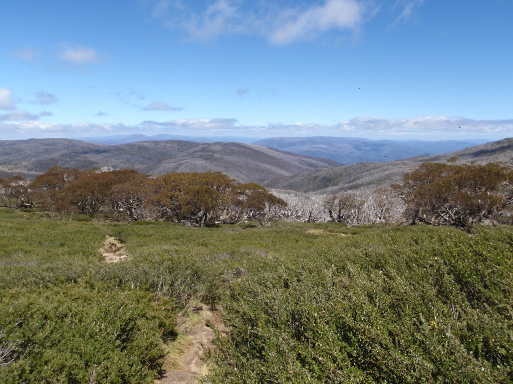 Looking down along the Dead Horse gap track