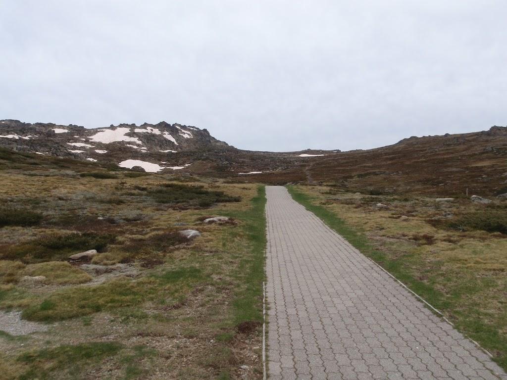 kosciuszko footpath (84829)