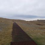 following the kosciuszko path (85030)