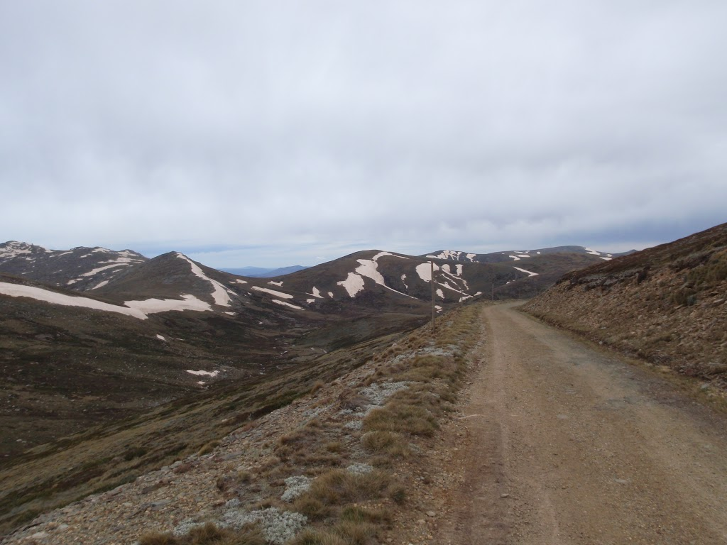 The Old Kosciusko Road below Rawson Pass (85174)
