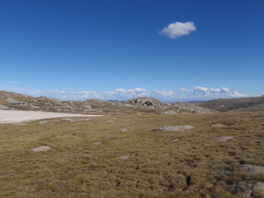 Mt Townsend plateau