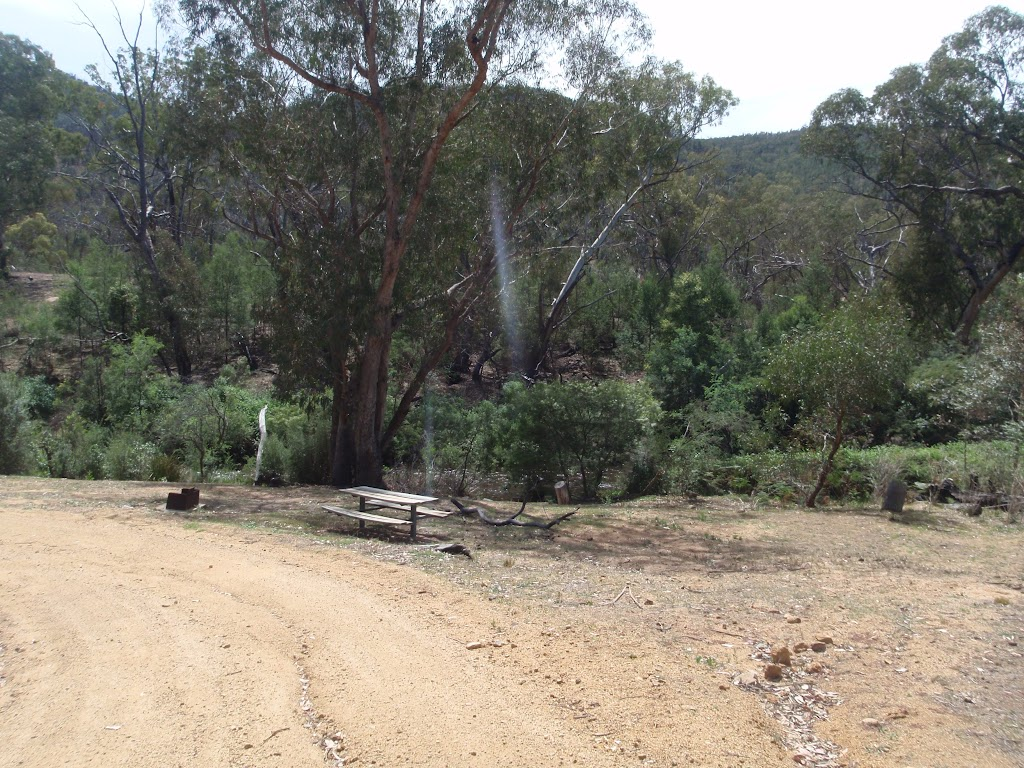 Driving into Jacobs River Camping Area