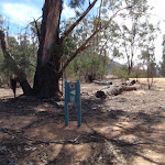 Welcome to Pinch River Camping area