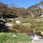 spencers creek