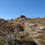 climbing up to top of ridge (87907)