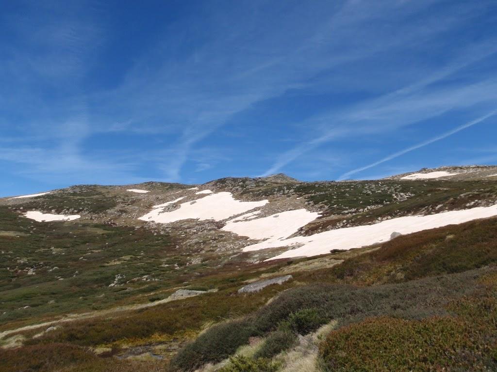 Snow on the side of Mt Twynam
