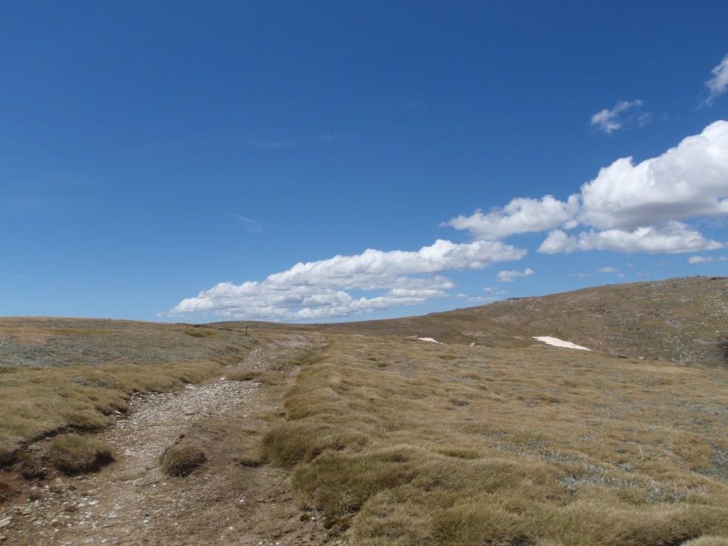 Old management trail west of Mt Twynam
