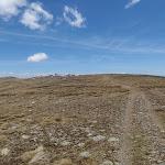 twynam service trail (89326)
