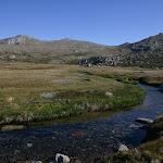 Wilkinsons Creek campsite (89647)