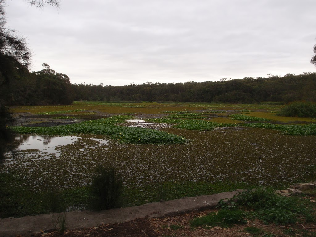 view of the lagoon from henry lawson drive
