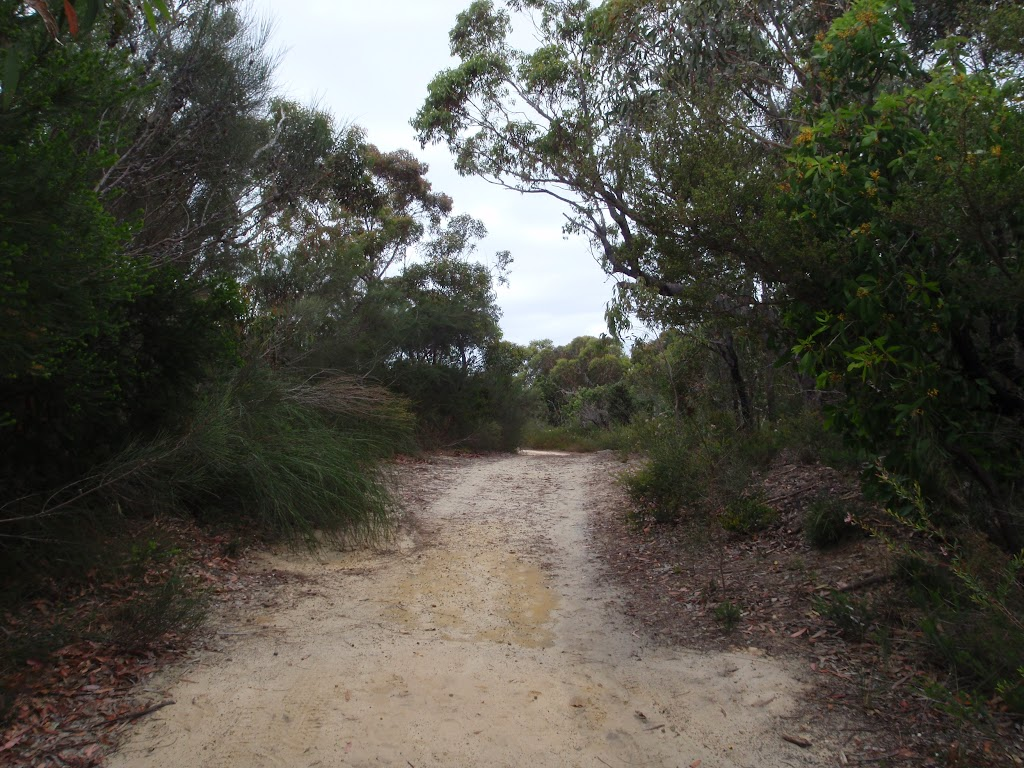 Elvina Track near West Head Rd (90465)