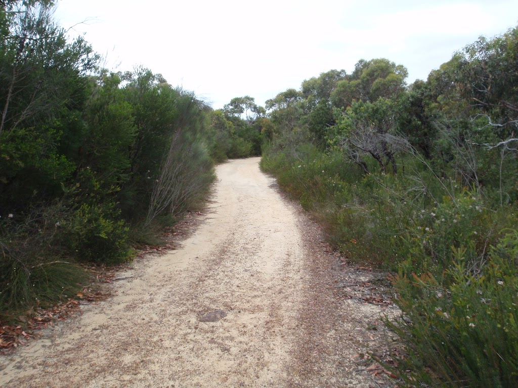 Elvina Track near West Head Rd (90468)