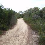 Elvina Track near West Head Rd (90468)