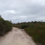 Elvina Track near West Head Rd (90471)